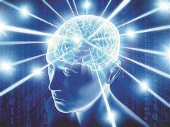 科学家绘数字版人脑图谱 人脑研究有清晰导航图